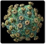 HIV Virus Image_218300485.jpg